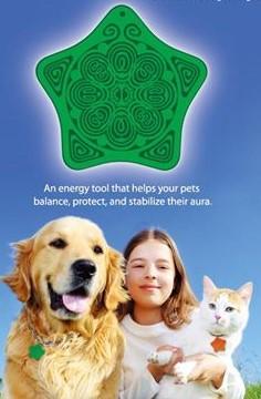 寵物碟 green
